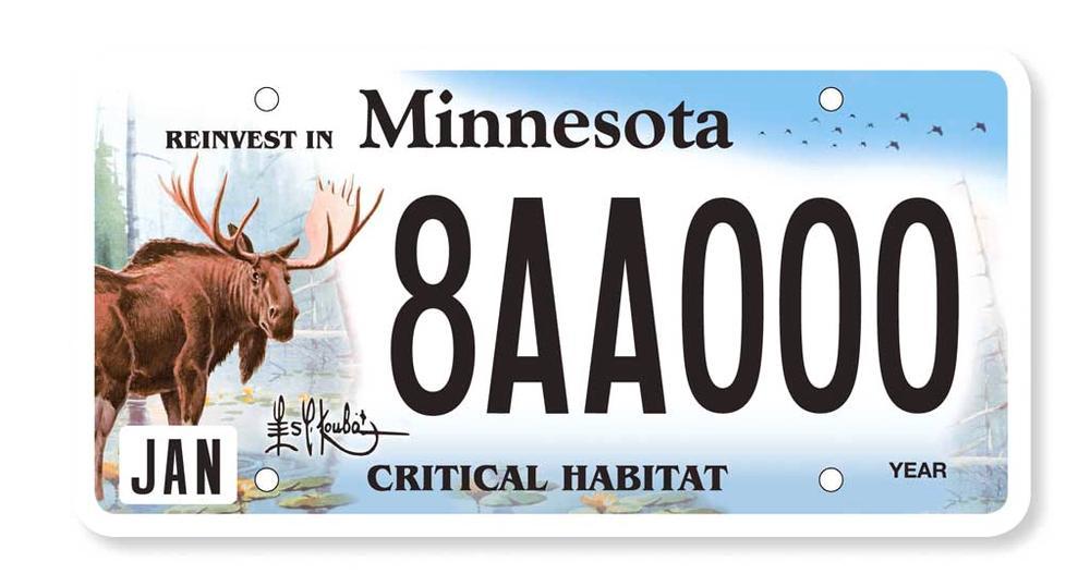 Les Kouba - MN Moose License Plate